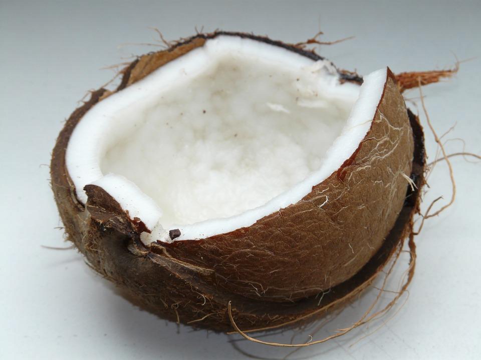 فوائد جوز الهند للحامل والجنين Coconut