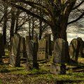تفسير حلم رؤية المقبرة في المنام لابن سيرين