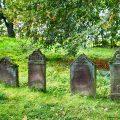 تفسير حلم رؤية دفن الأموات في المنام لابن سيرين