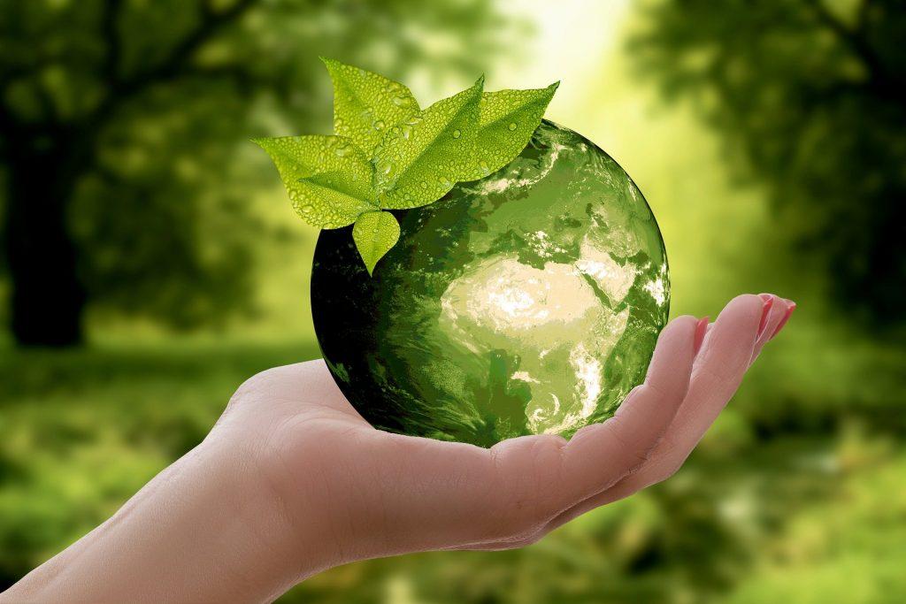 تفسير حلم رؤية الأرض في المنام لابن سيرين خير أم شر؟