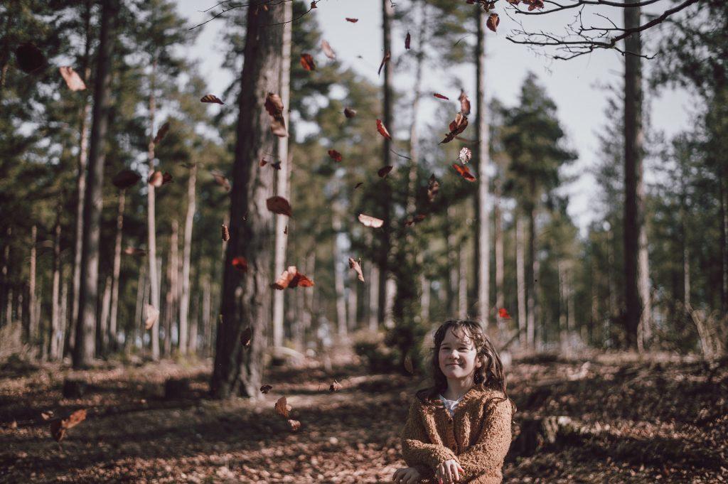 تفسير رؤية تساقط الأشجار في الحلم أو المنام لابن سيرين