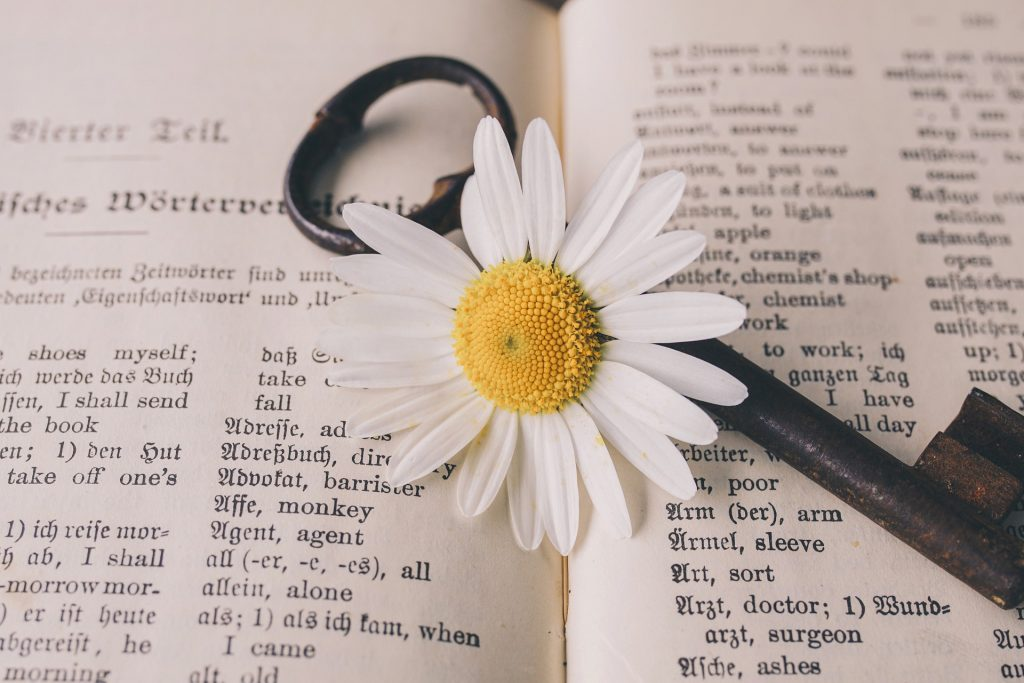 TOEFL vocabulary and their meanings